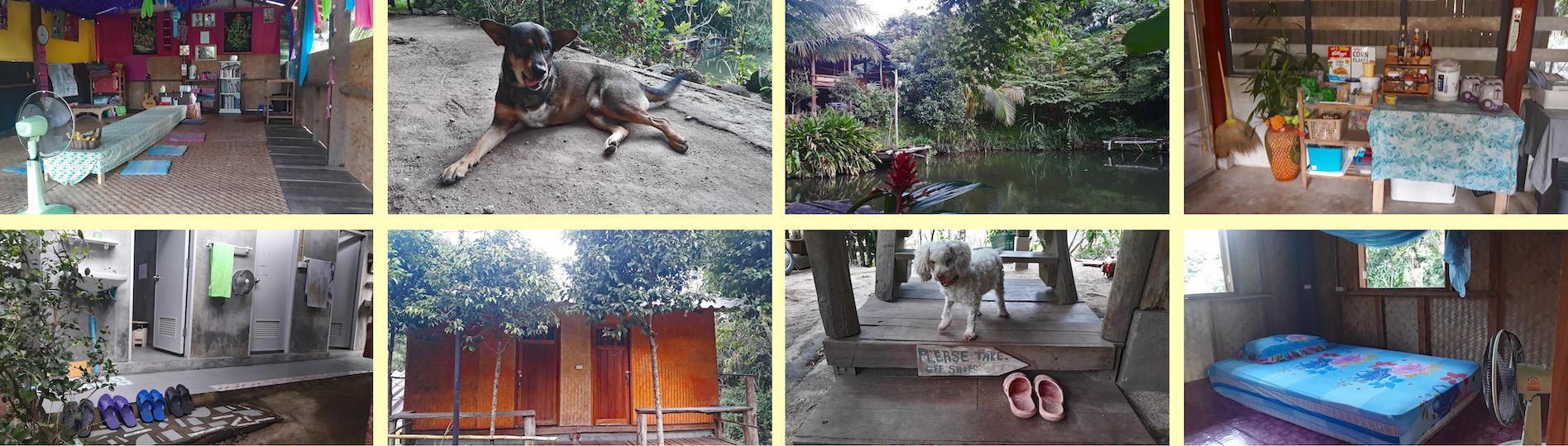 Visit Us - Accommodation Collage