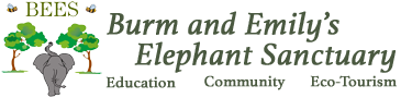 BEES Elephant Sanctuary BEE Logo Banner
