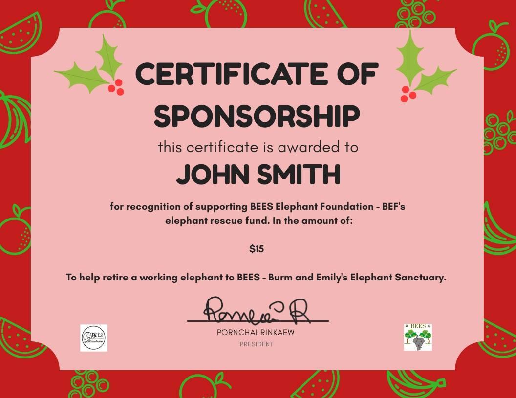 Sponsorship Certificate Christmas - Change