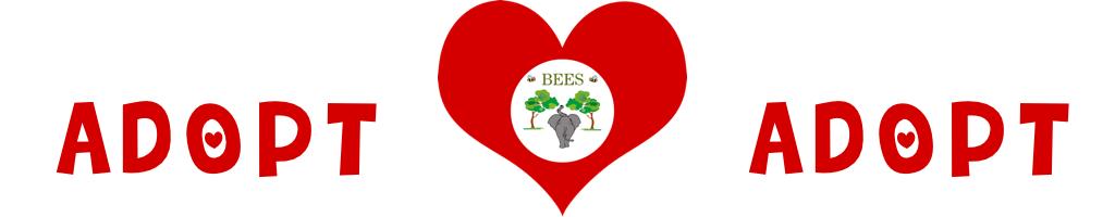 Adoptions Heart Banner