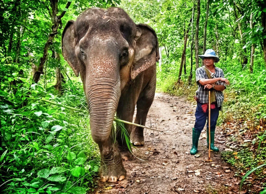 Thong Dee with her Caretaker Por Kham